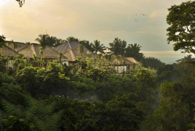 Luwak Ubud Villas - 3 Bedrooms Villa - Ubud Luxury Villa